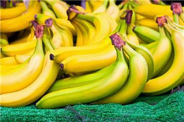 坐月子可以吃水果吗