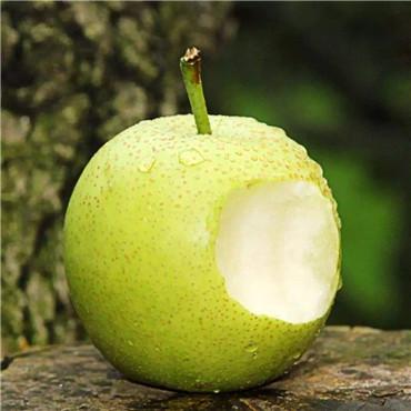 感冒吃什么水果