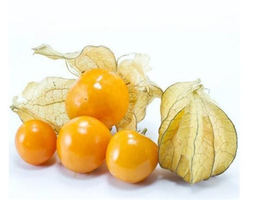 花姑娘水果