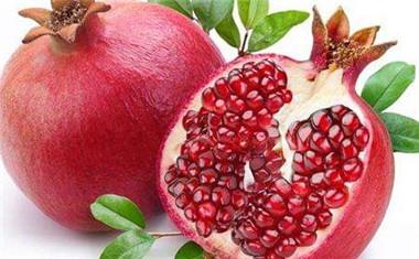秋天有什么水果