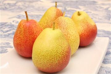 发烧吃什么水果好