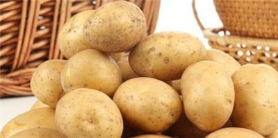 吃什么蔬菜最减肥