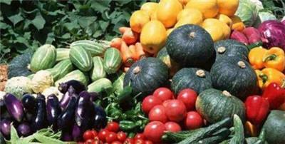 有机蔬菜专卖店