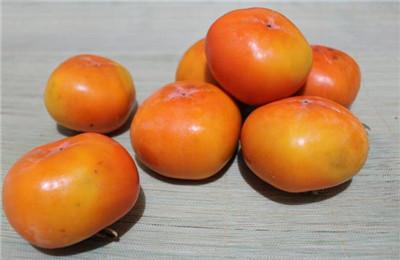 空腹吃柿子