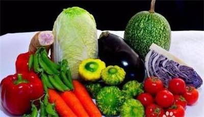 有机蔬菜销售模式