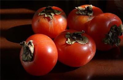 柿子不能和什么一块吃